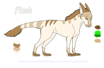 Dragon-Dog Character Reference Sheet- Fizek by Tephra76