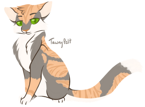 [100 WARRIOR CATS CHALLENGE] #23 - Tawnypelt by toboe5tails