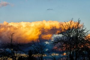 Clouds Behind the Trees by MrFotkerman