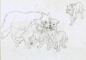 wolf pups by Carindala