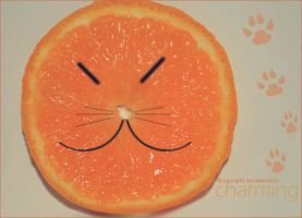 Orang cat hehe by charming-uae