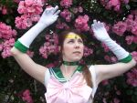 Sailor Jupiter: Garden Dream by BlazeRocket