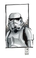 Stormtrooper by idirt
