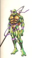 donatello by pierrick13008