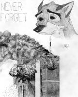 Balto Never Forget by DragonWolfACe