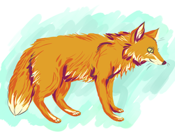 foxy by ccarry