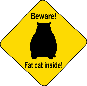 Fat Cat by Mutar