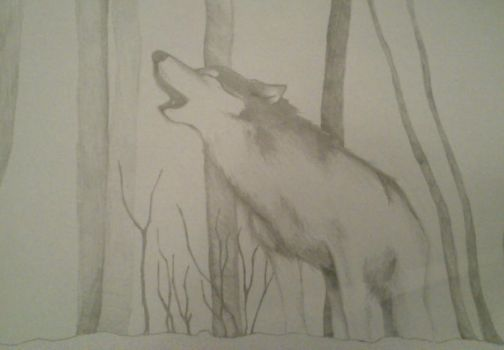wolf #1 by paulinapin