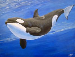 Orca by MzJekyl