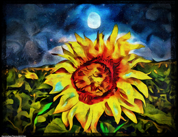 Digital Painting: Why Should the Sun Have Me by UkuleleMoon