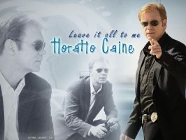 Horatio Caine by Machii-csi