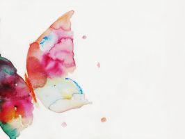 watercolor butterfly by Arsmara