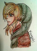 Link by kaageshi
