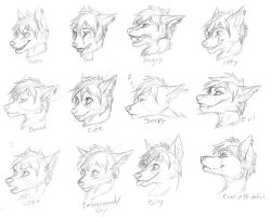 Conner Expression Sheet - WIP by kcravenyote