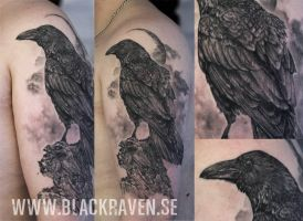 The raven by BlackRavenSWE