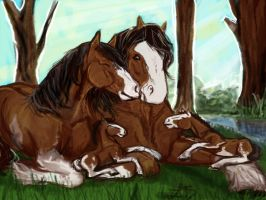 Horse family color doodled by ArtisinmyHeart
