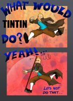 What Would Tintin do? by Evilddragonqueen