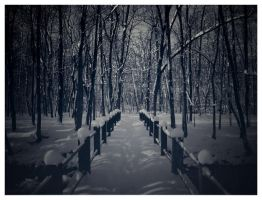 Winter Bliss II by mr-sarcastic1984