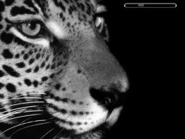 Leopard by computerarts