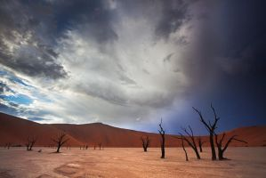 Dead vlei sunrise 4 by Zefisheye