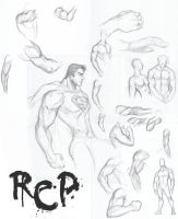 ROB101709-Arm Studies 1 by SKRATCHWORK