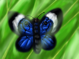 Butterfly painting by Jenndragon