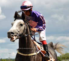 Horse Racing 6 by JullelinPhotography