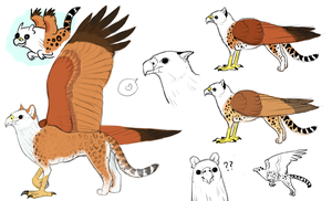 Gryphon Sketches by Servaline