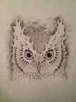 Owl by Cammo7495