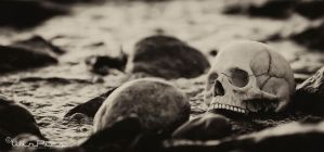 Skull at beach by WinPics