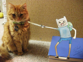 Finn vs. Cat by Silent--Haze