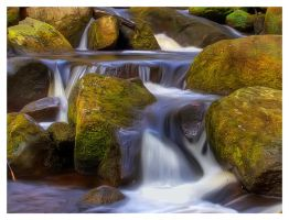 padley gorge 7 by mzkate