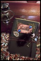 an Elf's Journal by sixAstray