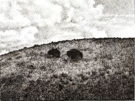 Buffalo Roam by ratfactor