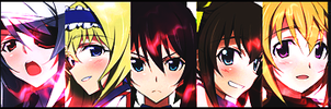 Infinite Stratos by ckmox