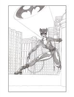 Catwoman On The Rooftops by SerenaGuerra