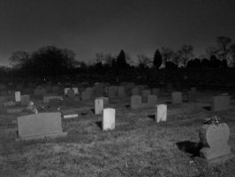 riverview cemetary by mossig