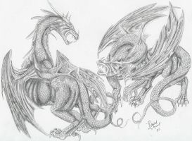 Two dragons fight by DrMario64