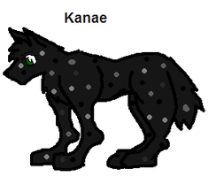 Kanae Ref by Eaglefoot