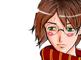 Harry Potter 16 by shiorimaster