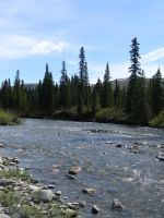 Alaska River 19 by prints-of-stock