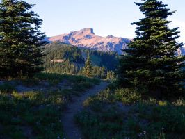Winding Trail at the Goat Rocks Wilderness by FlutterbatIsMagic