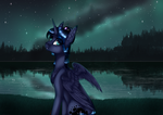 Do you want to watch the stars with me? speedpaint by Czywko