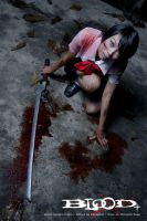 bloody saya by dadailynn
