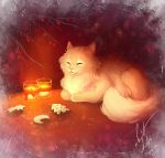 Comfort, cat and cookie by Ann-Nick