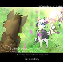 Meeting a StarClan-Warrior by JB-Pawstep