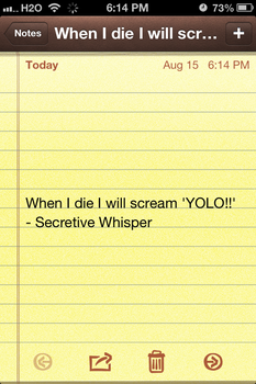 YOLO by MusicLover135