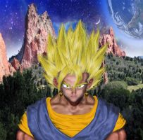 vegetto  real by abelbus