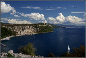 View to Trieste by klavdijo99