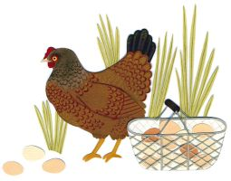 Caring For Chickens by JessicaRaeGordon